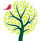 arbre_biodiversite_carre